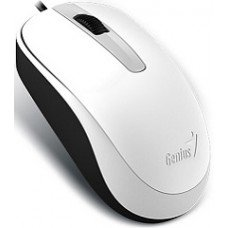 GENIUS MOUSE DX-120, WIRED, USB, OPTICAL, WHITE, 2YW.